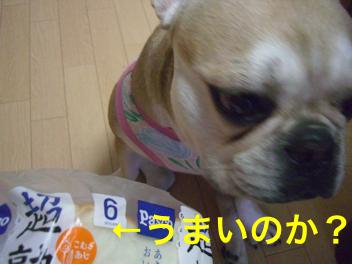 CIMG4795.jpg