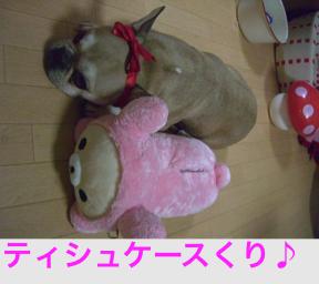 CIMG5413.jpg
