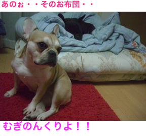 CIMG5460.jpg