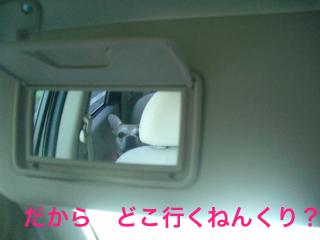 CIMG5653.jpg