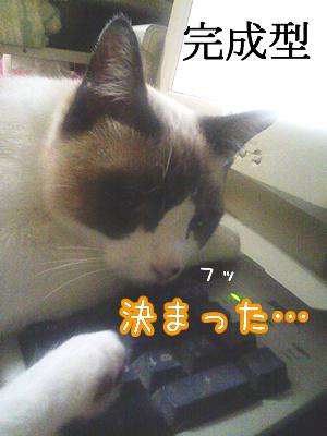 20080609-8.jpg