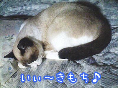 20080621-2.jpg