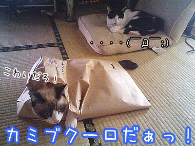 20080627-12.jpg