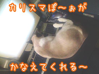 20080703-6.jpg