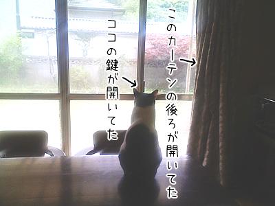 20080706-3.jpg