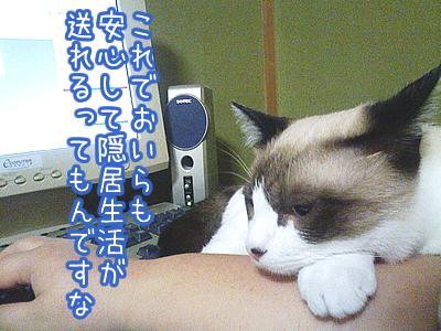 20080711-5.jpg
