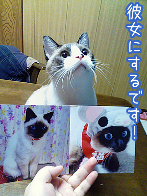 20080725-6.jpg