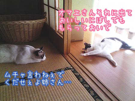 20080809-11.jpg