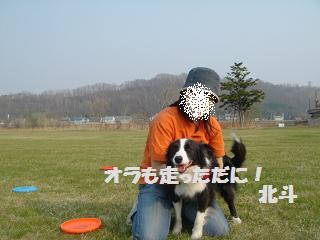 dog20080422 021