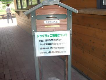 CIMG6650a.jpg