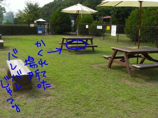 20080811t.jpg