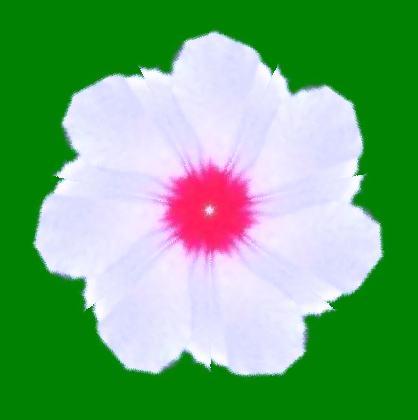 むくげの花・イラスト万華鏡588