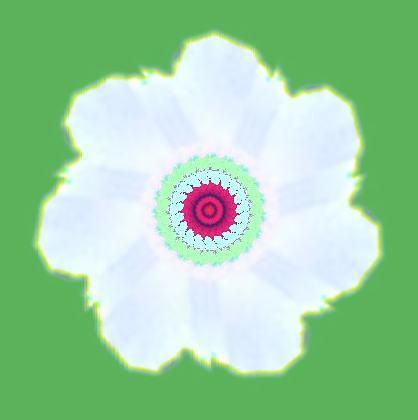ムクゲの花・イラスト万華鏡589