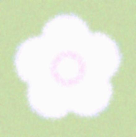 雪椿/イラスト万華鏡627