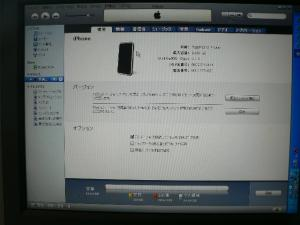 P1050048_convert_20080809145321.jpg