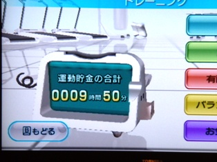 WiiFitTotal.jpg