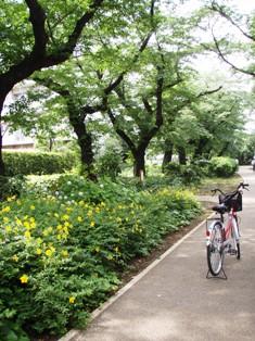 blog_jitensya.jpg