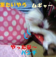 DVC00038.jpg