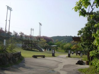 yamaguchi-happinesfukue11.jpg