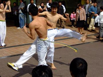 この蹴りあいで起こった竜巻で飯田橋の桜が散ったとか散らないとか・・・