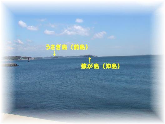 画像 2938