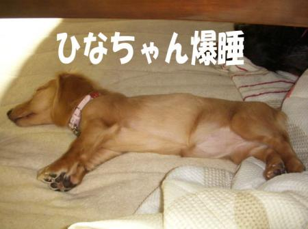 bakusuiimage5.jpg