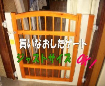 ge-to2image2.jpg