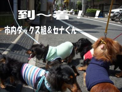tootyakuimage2_20080720123044.jpg