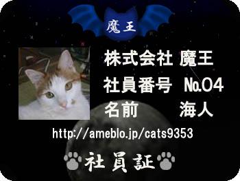 0-2_20080411214709.jpg