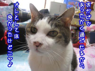 0-6_20080512121907.jpg