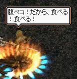 20080511_06.jpg
