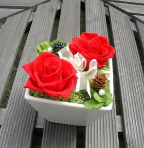 赤いバラ2輪