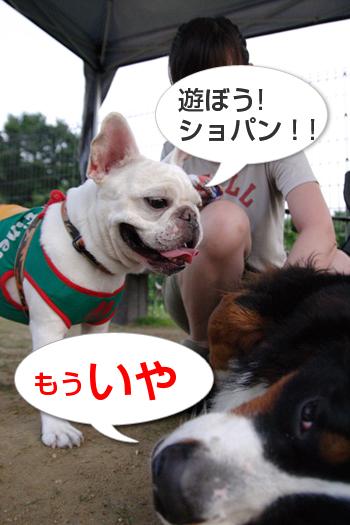 20080713_13.jpg