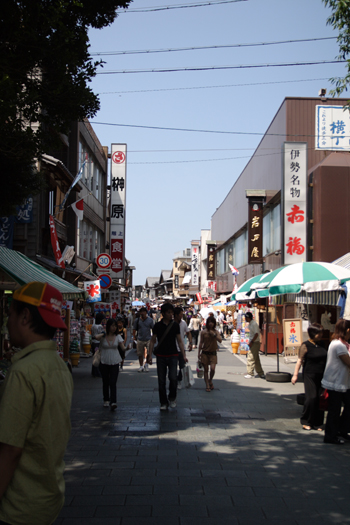20080811_02.jpg