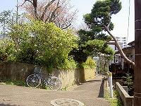 s-s-PICT6705.jpg