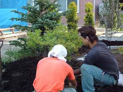 植樹と剪定作業