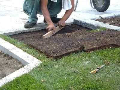 床土の修正