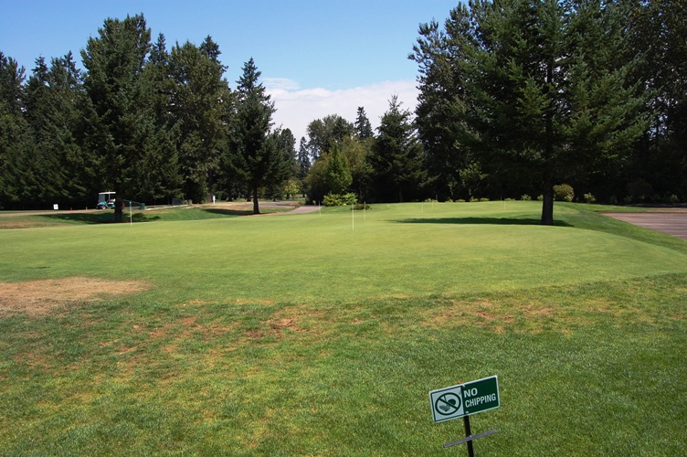 Salem golf Club 5