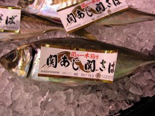 20080430_aji.jpg