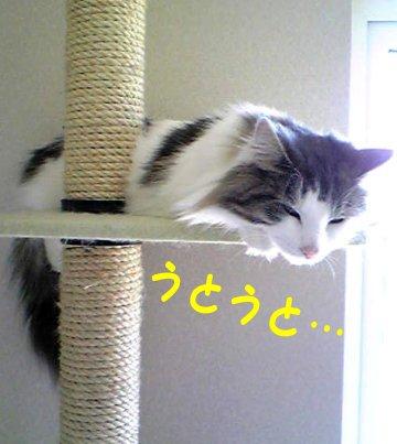 Image067d.jpg