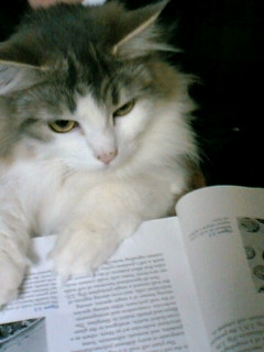 readingflora.jpg