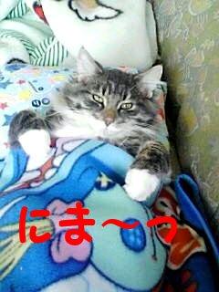 ryu_chan.jpg