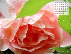 湘南風景壁紙カレンダー2008年7月その1