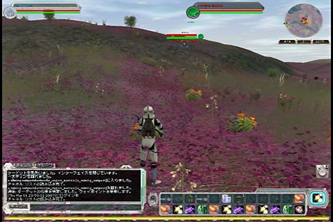20070301b.jpg