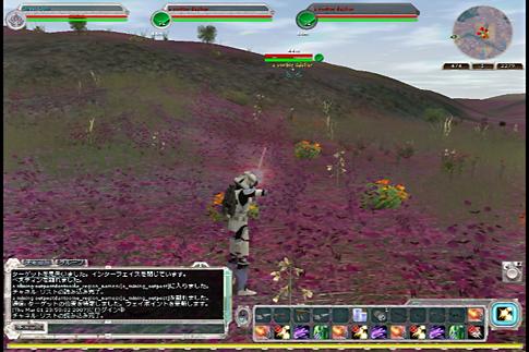20070301d.jpg