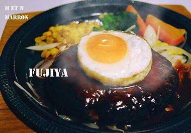 fujiyakakogawa04.jpg