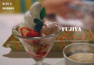 fujiyakakogawa05.jpg