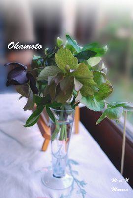 okamoto08.jpg