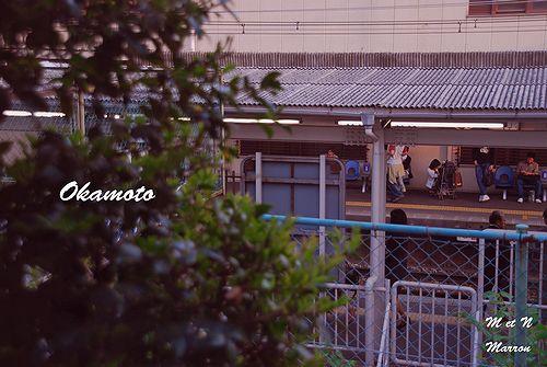 okamoto09.jpg