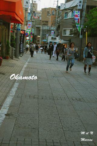okamoto11.jpg